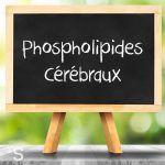 Phospholipides cérébraux