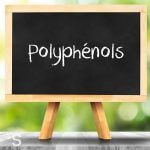 Polyphénols