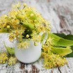 Cure / Recette - Réduire l'acidité dans le corps - aubier de tilleul & lithothamne