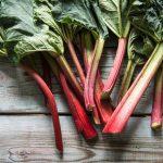 Cure / Recette - Lutter contre la constipation - rhubarbe