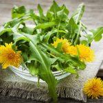 Cure / Recette - Cure de détox pour la vitalité - plantes & chlorelle