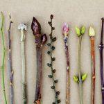 Soigner le psoriasis - Bourgeons de cassis, figuier & orme