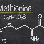 Méthionine
